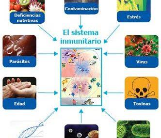 Factores que debilitan el sistema inmune