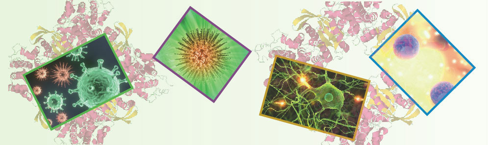 Impresiones del IV Simposio de Micro-Inmunoterapia (Mallorca)