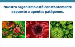 Las aplicaciones de la Micro-Inmunoterapia