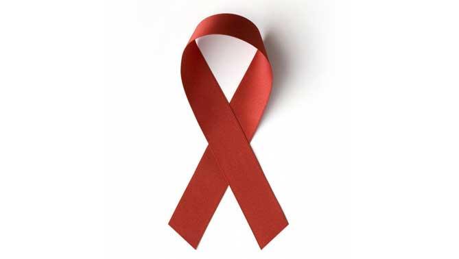 El Virus de Inmunodeficiencia Humana (VIH) es un lentovirus (virus cuyo periodo de incubación es muy largo) que altera las funciones del sistema inmunológico
