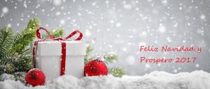 ¡Felices fiestas y feliz año 2017!