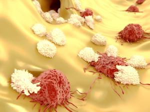 ¿Qué papel tiene el sistema inmune en el control del crecimiento tumoral?