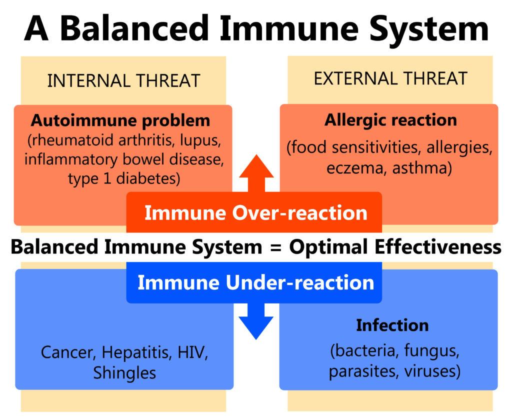 Homeostasis inmunitaria