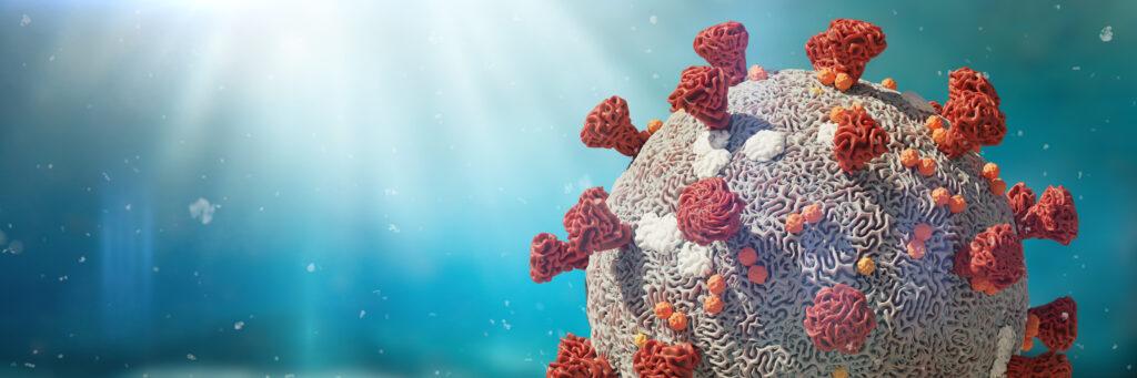 Diagnóstico de la infección viral